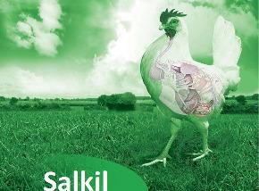 Salkil